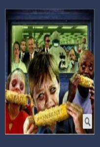 GMO Sample 1a