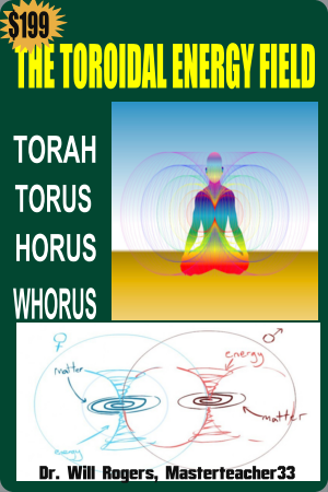 Toroid Book Cover