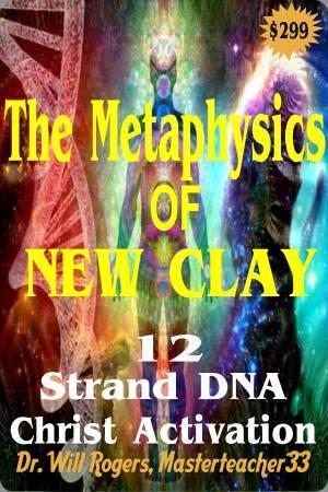 Metaphysics of New Clay